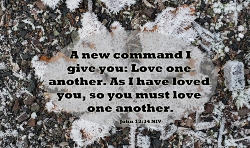 a new command: love one another