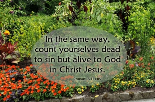 dead to sin alive in Christ