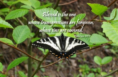 blessed is the one whose sin is forgiven