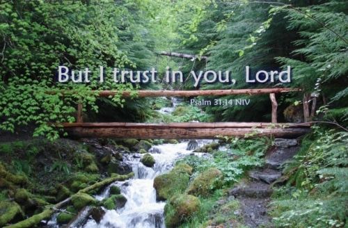 I trust in you Lord
