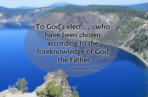 Election Predestination Foreknowledge
