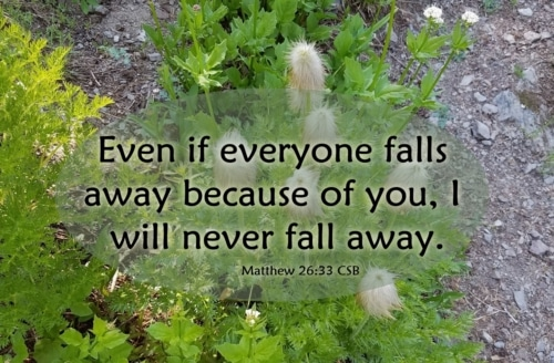 I will never fall away