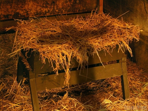 manger and the cross