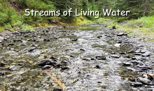 streams of living water welling up into eternal life