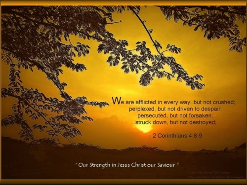 strength in the Lord