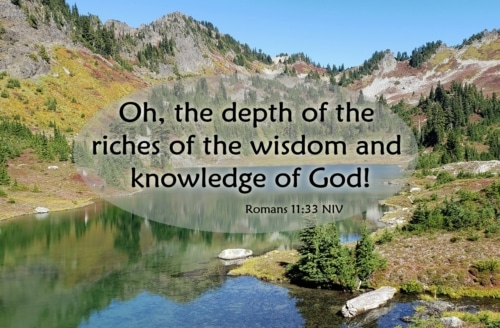 We should not question the wisdom of God and his understanding