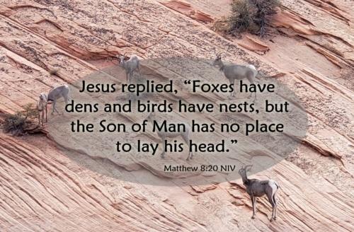cost of following Jesus