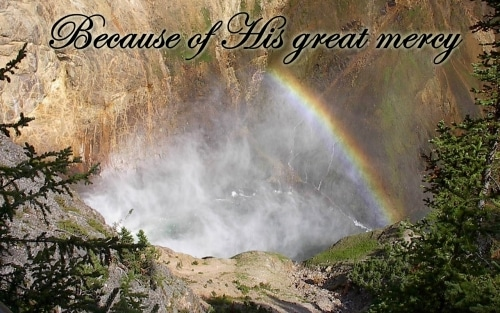 because of his great mercy